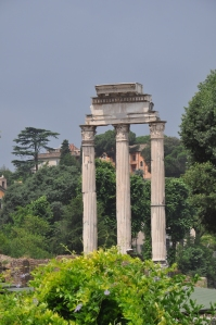...columns in the Forum...